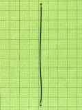 Антенный кабель Xiaomi Redmi 5, Оригинал